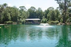 Pond in Shalom Park