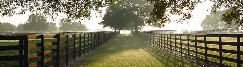 Ocala Florida fence and path at sunrise