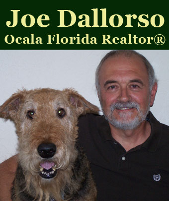 Joe Dallorso | Ocala FL Realtor®