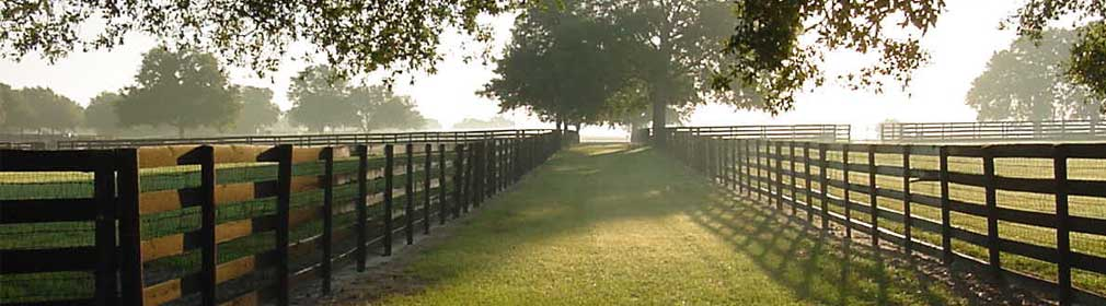 Fence at sunrise in Ocala, Florida